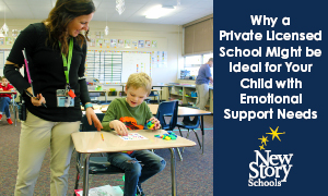 Why a Licensed Private Academic School May be Ideal for Your Child with Emotional Support Needs